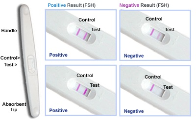 image detect pregnancy at home easily with drops of urine sample positive test is pregnancy is present useful not just after sex, but after the date of missed period ONLY